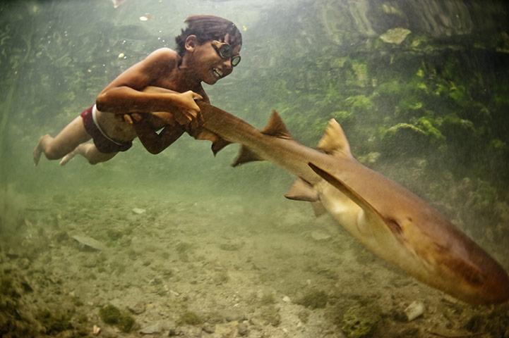 bajau_laut_pet_shark